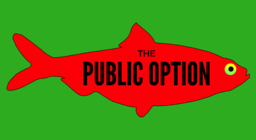 Public Option? Another Red Herring